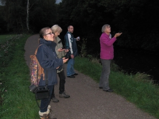 bat-walk Clydach