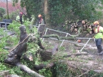 tree-down-at-trebanos