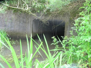 1st-walk-on-fendrod-to-clydach-new-route-29-5-14-003