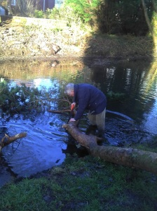 Removing fallen tree, Coed Gwilym Park