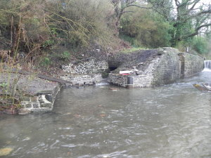 Trebanos Lock 27 Dec 15 (3)