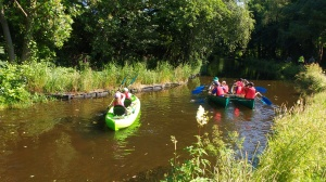School group canoes (18)
