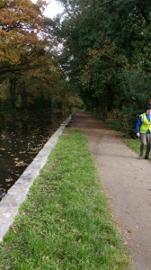 the-towpath-edge-coed-gwilym-park
