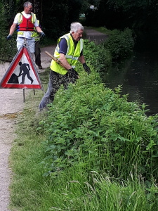 Removing Canadian Pond weed near Coed Gwilym Park.